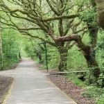 Halewood park