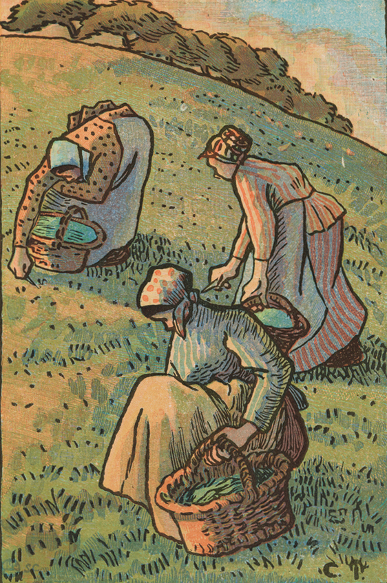 Camille Pissarro Women Weeding the Grass, for 'The Labours of the Fields' 1894 © Ashmolean Museum, University of Oxford